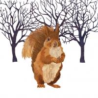 Cocktail Servietten Winter Squirrel