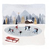 Servietten 25x25 cm - Mountain Skating