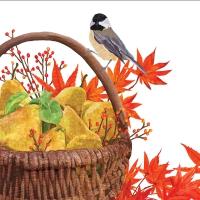 Servietten 25x25 cm - Autumn Pears