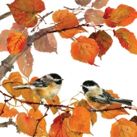Servietten 33x33 cm - Autumn Birds