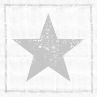 Servietten 33x33 cm - Star Fashion silver