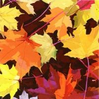 Servietten 33x33 cm - Martha´s Blätter
