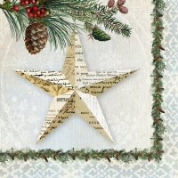 Servietten 33x33 cm - Winter Lodge Star