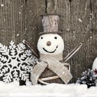 Servietten 33x33 cm - Funny Frosty