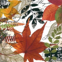 Servietten 33x33 cm - Autumn Collage