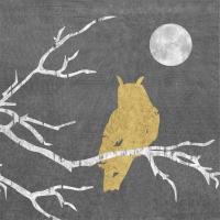 Servietten 33x33 cm - Mystic Owl