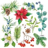 Servietten 33x33 cm - Winterflora
