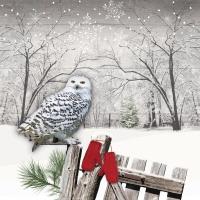 Servietten 33x33 cm - Wintry Owl