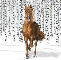 Servietten 33x33 cm - Wilderness Horse