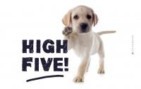 Frühstücks-Brettchen - High Five