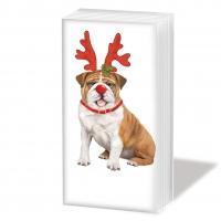 Taschentücher Xmas Bulldog