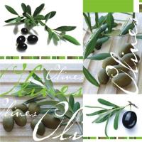 20 Servietten 33x33 cm - Olives