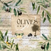 20 Servietten 33x33 cm - Olive Tree