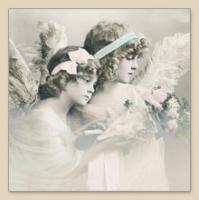 Servietten 33x33 cm - FLOWER ANGELS