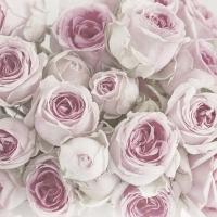 Lunch Servietten Pink Roses