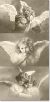 Taschentücher - angels