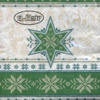 Servietten 24x24 cm - Hivernale green
