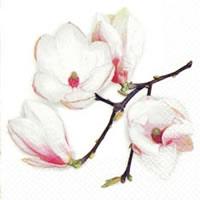 Servietten 24x24 cm - White Magnolia white
