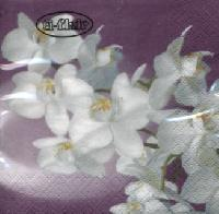 Cocktail Servietten Orchidea Bianca lilac