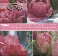 Servietten 24x24 cm - Tulipes Roses pink