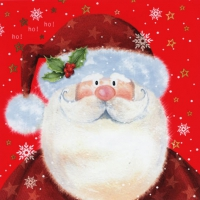 Servietten 33x33 cm - Saint Nick red