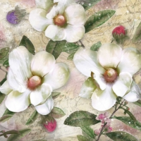 Servietten 33x33 cm - Trois Magnolien Blanc
