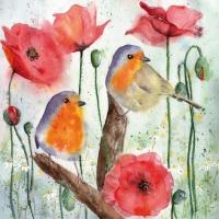 Servietten 33x33 cm - Red Robin & Poppy