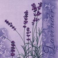 Servietten 33x33 cm - Duft von Lavendel
