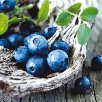 Lunch Servietten Blueberries