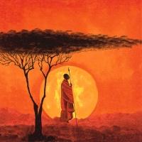 Servietten 33x33 cm - African Sunset