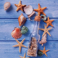Servietten 33x33 cm - Glas Bottle with Seashells