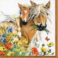 Servietten 33x33 cm - Horses in Summer Meadow