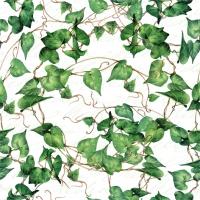 Servietten 33x33 cm - Green Ivy Branches