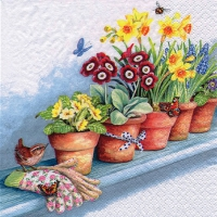 Servietten 33x33 cm - Windowsill with Flower Pots