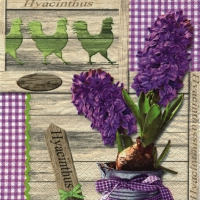 Lunch Servietten Lilac Hyacinthus