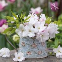 Servietten 33x33 cm - White Crabapples in Vintage Vase