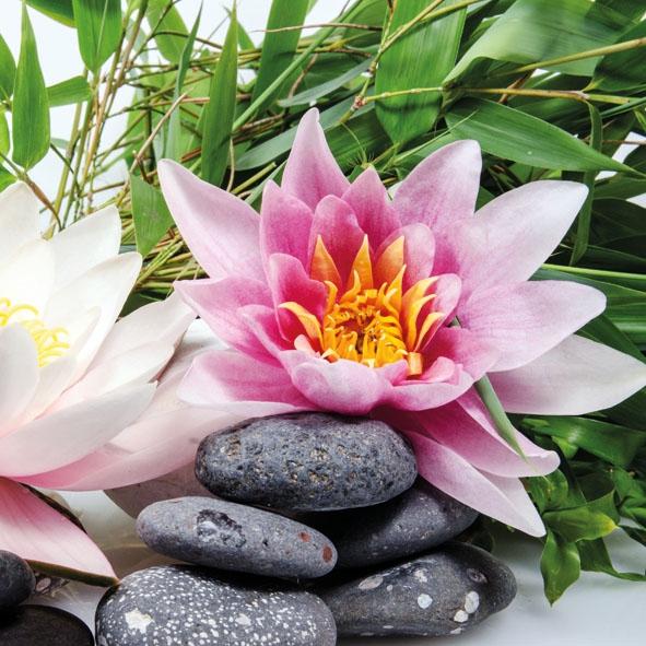 Servietten 33x33 cm - Water Lily