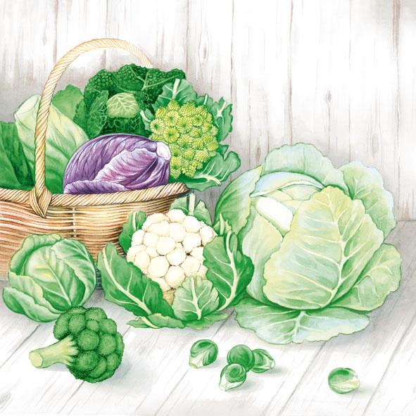 Servietten 33x33 cm - Cabbage