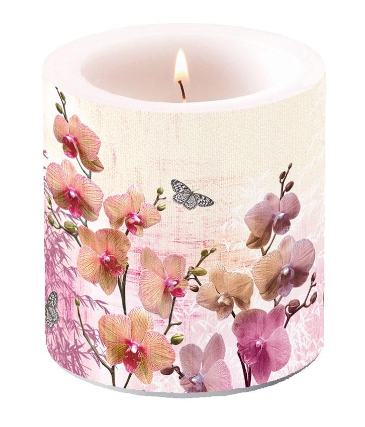 Dekorkerze klein - Orchids Orient