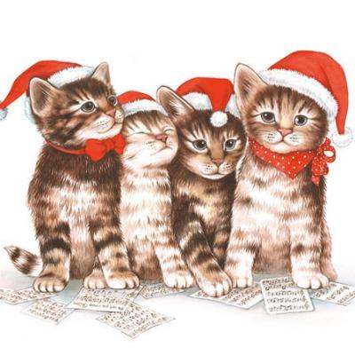 Servietten 25x25 cm - Singende Katzen