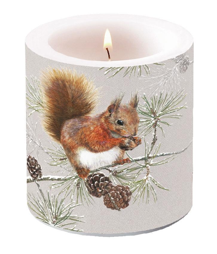 Dekorkerze klein -  Squirrel In Winter