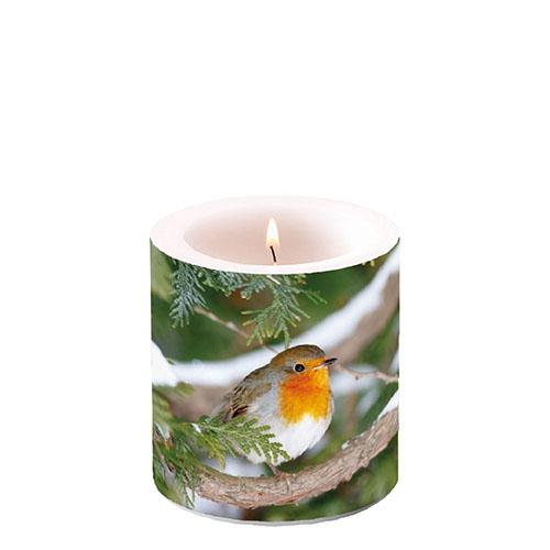 Dekorkerze klein - Robin In Tree