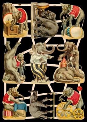 Glanzbilder - Zirkuselefanten