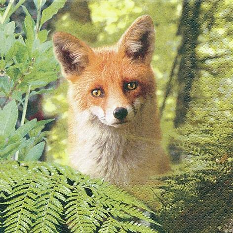 Servietten 33x33 cm - Ricky the Fox