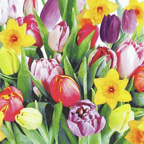 Servietten 33x33 cm - Bouquet of Tulips
