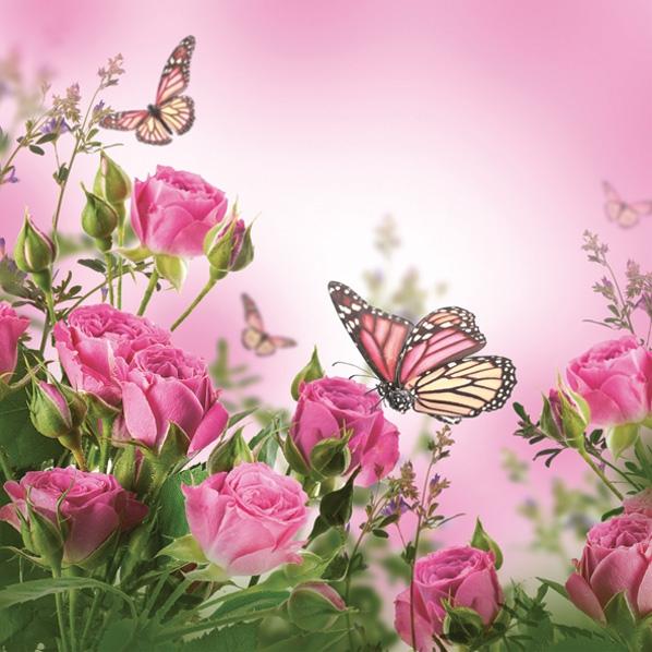 Servietten 33x33 cm - Rosen & Schmetterlinge