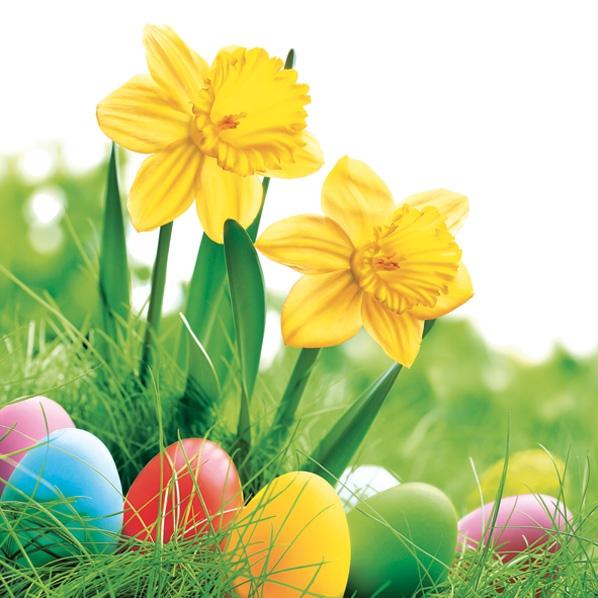 Servietten 33x33 cm - Daffodils with Colorful Eggs