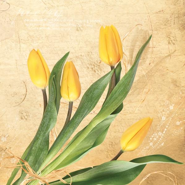 Servietten 33x33 cm - Haufen gelbe Tulpen