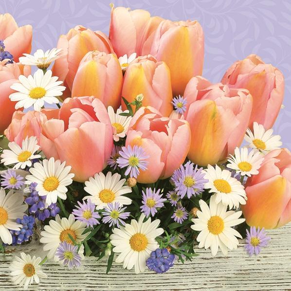 Servietten 33x33 cm - Orangefarbene Tulpen mit Gänseblümchen