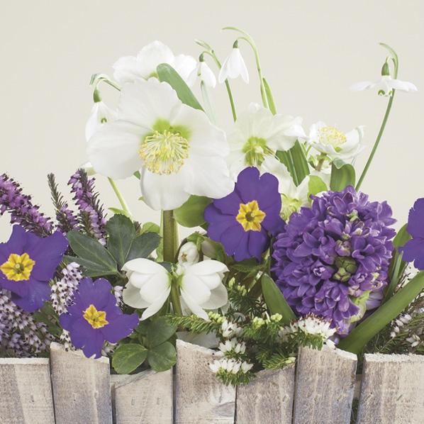 Servietten 33x33 cm - Blumen hinter dem Holzzaun